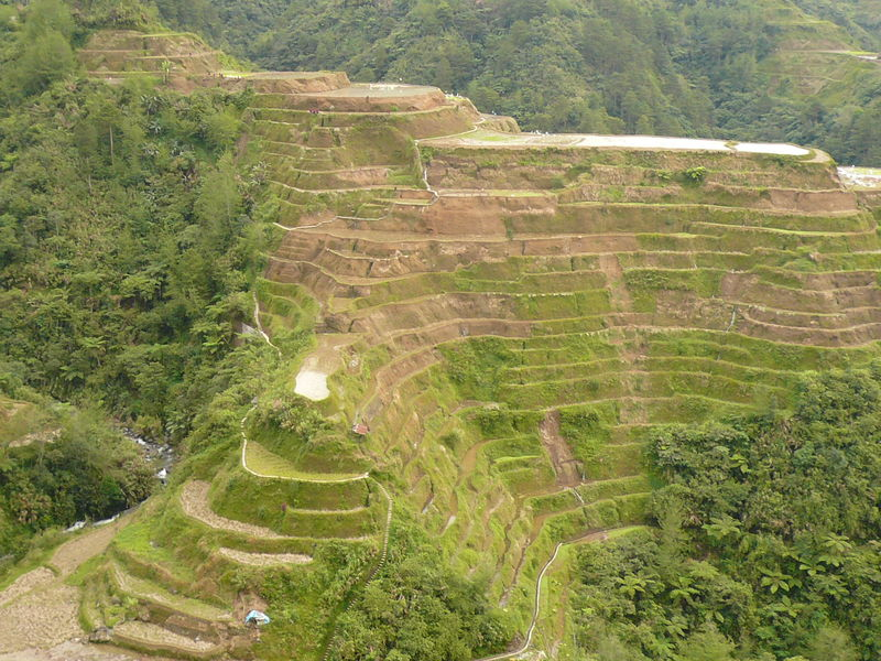 Banaue terraces de riz