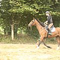 équitation de pleine nature - rallye équestre (66)
