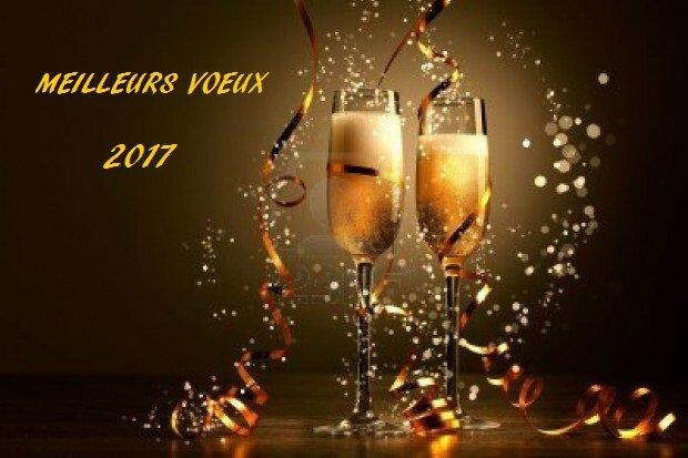 Meilleurs_Voeux_2017_A___Copie