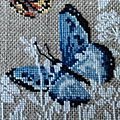 Papillon bleu bas - Copie