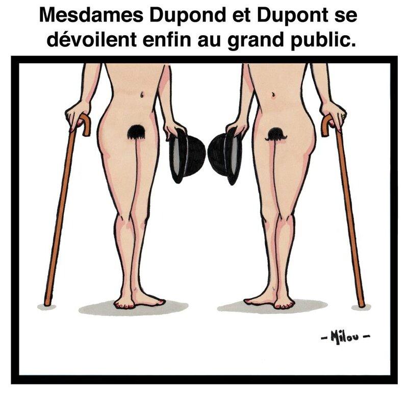 DDS 497 Mesdames Dupondt