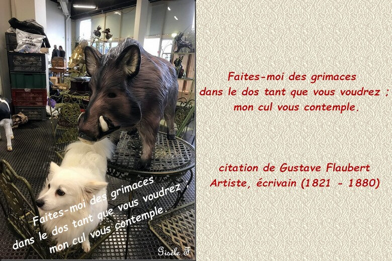 image citations G fayet