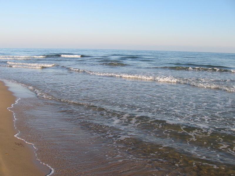 Histoire de vagues