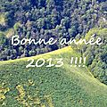 Voeux 2013...