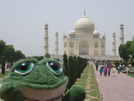 Photo de brOOky devant le Taj Mahal et son architecture symétrique