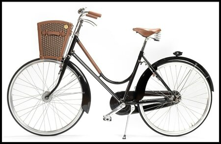 moynat malle a bicyclette 2
