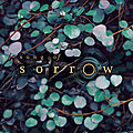 Song of Sorrow_Melinda Salisbury