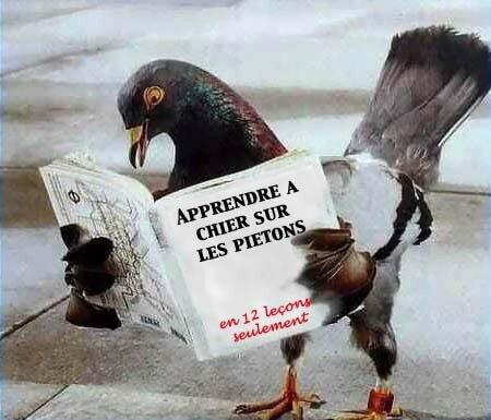 Pour_les_parisiens