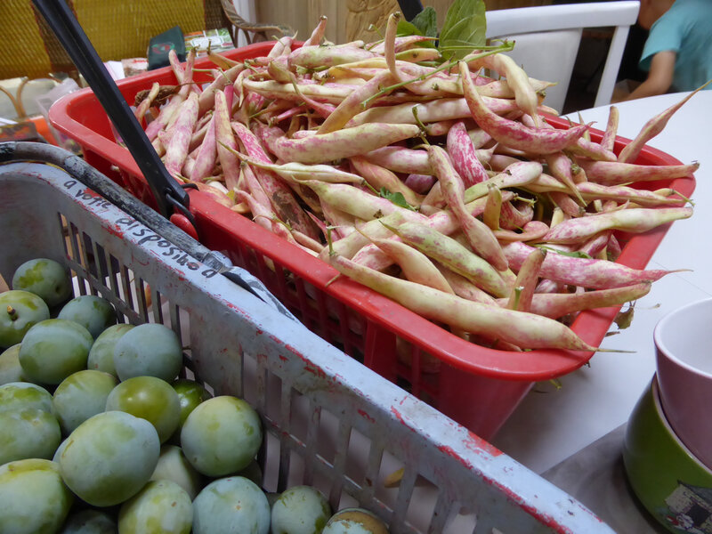 4-haricots demi secs-prunes