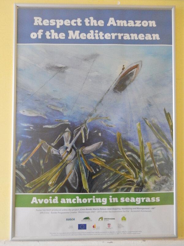 Evitez de mouiller sur les herbiers, affiche dans la capitainerie de Zelenika, 10 avril 2019