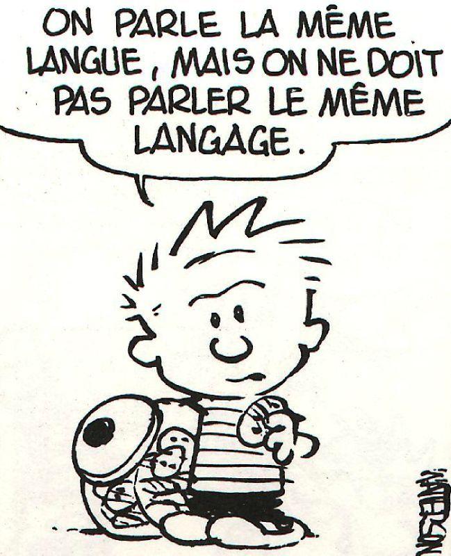 comp u00e9tence 2   ma u00eetrise de la langue fran u00e7aise
