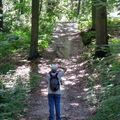 promenade en forêt plaisiroise