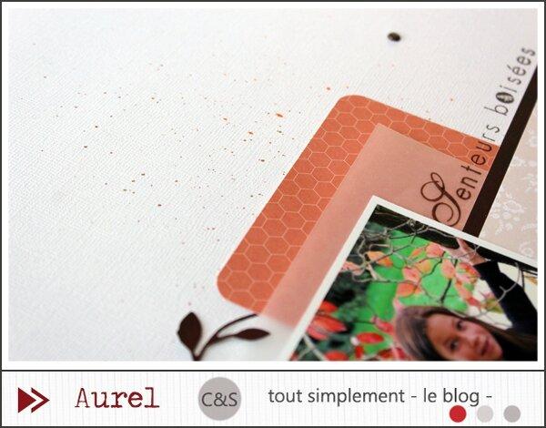 080415 - Senteurs boisées - Consignes3_blog