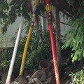 tuteurs pour arbre