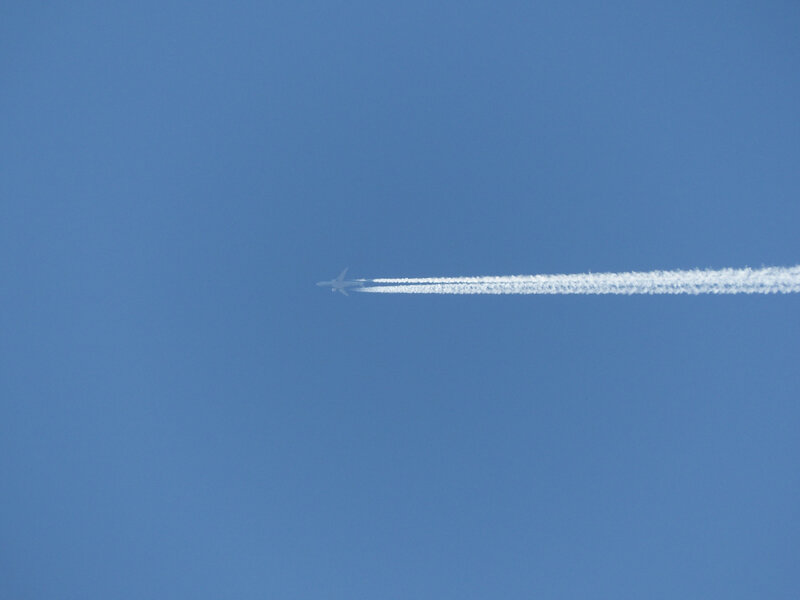 P1350515