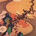 Ito jakuchu chrysanthemums by a stream and rocks