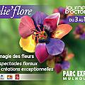 Quelques images de folie'flore 2013 à mulhouse