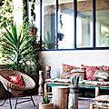 La decopelemele - les plantes . . . intérieur . . .