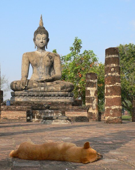 Sukothai_Temple