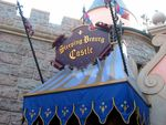 Disneyland_121