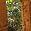La nature entoure le site. Copyright Olivier GOMEZ
