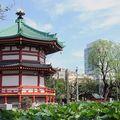 Parc Ueno (temple de Benten)