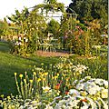 Windows-Live-Writer/Jardin_10232/DSCN0760_thumb