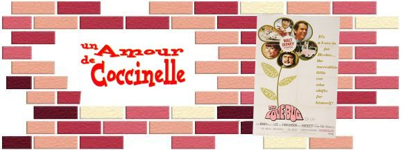 amour_de_coccinelle