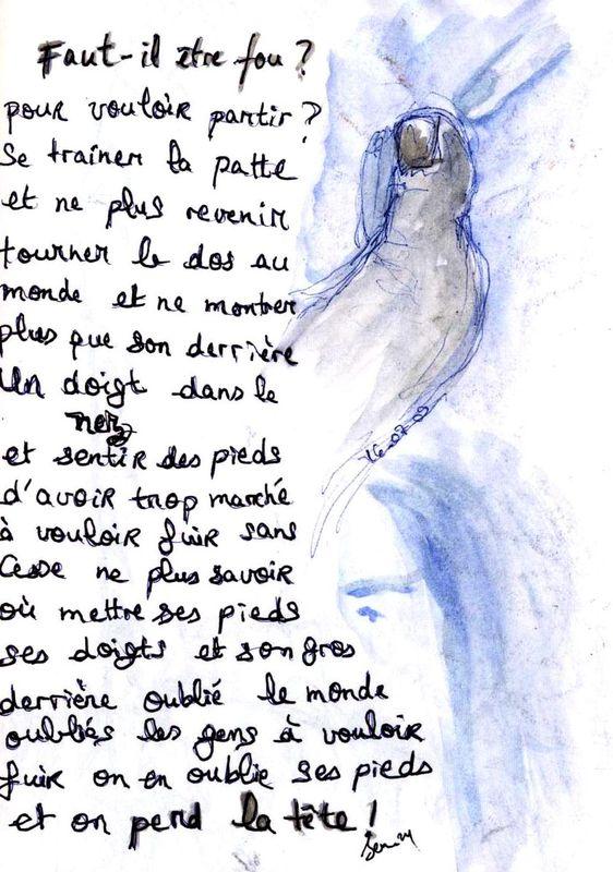 faut_il__tre_fou_du_pied2