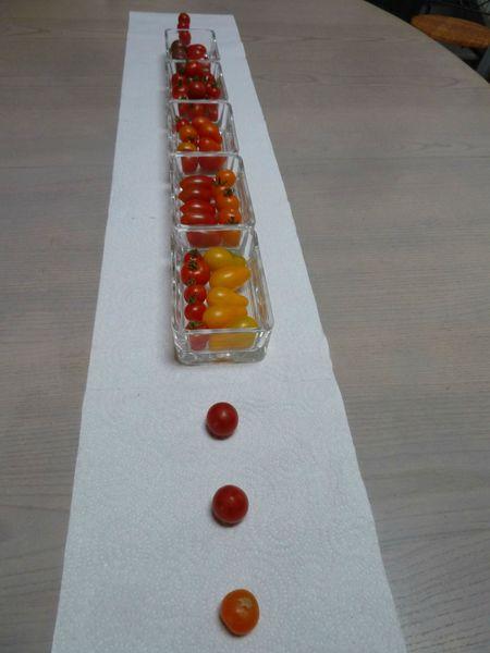 tomates cerises déco de table (1)