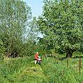 7 Nous essayons de trouver un chemin, dans l'herbe, quelle galère pour nos vélos de route.