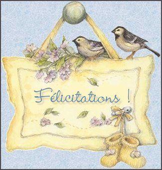 felicitations_oiseaux