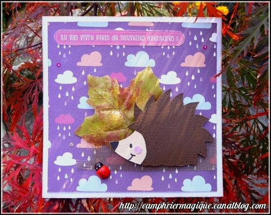 carte parfum d'automne