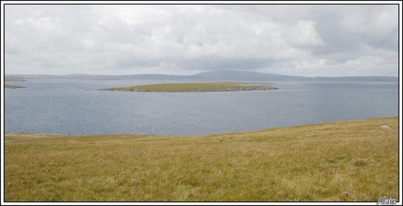 les Shetland...ce sont des îles...