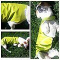 Robe imperméable vert anis. Toile cirée vert anis et doublure coton imprimé. Fermeture par scratch.