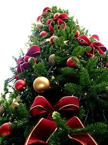 220px-Christmas_tree_sxc_hu