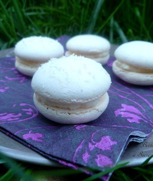 Macarons coco 3