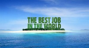 the_best_job_of_the_world_island_reef_job