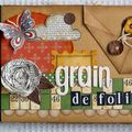 Grain-de-folie-(Couv)