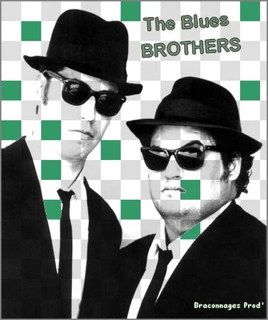 14_the_blues_brothers