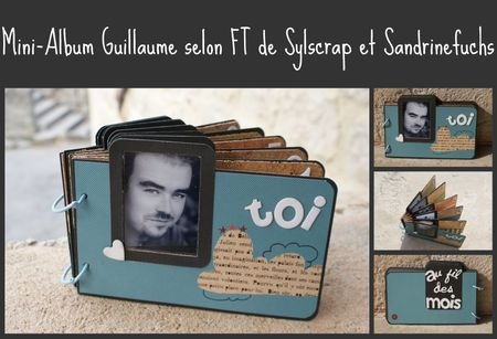 mini_Guillaume_1