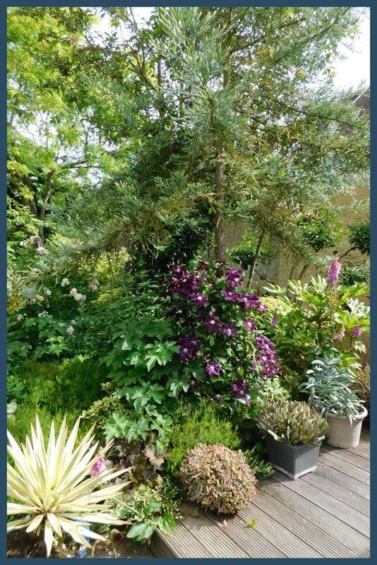 Jardin des Duo 03-0632