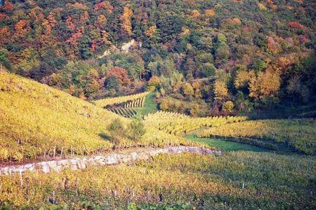 Jura_automne__1_