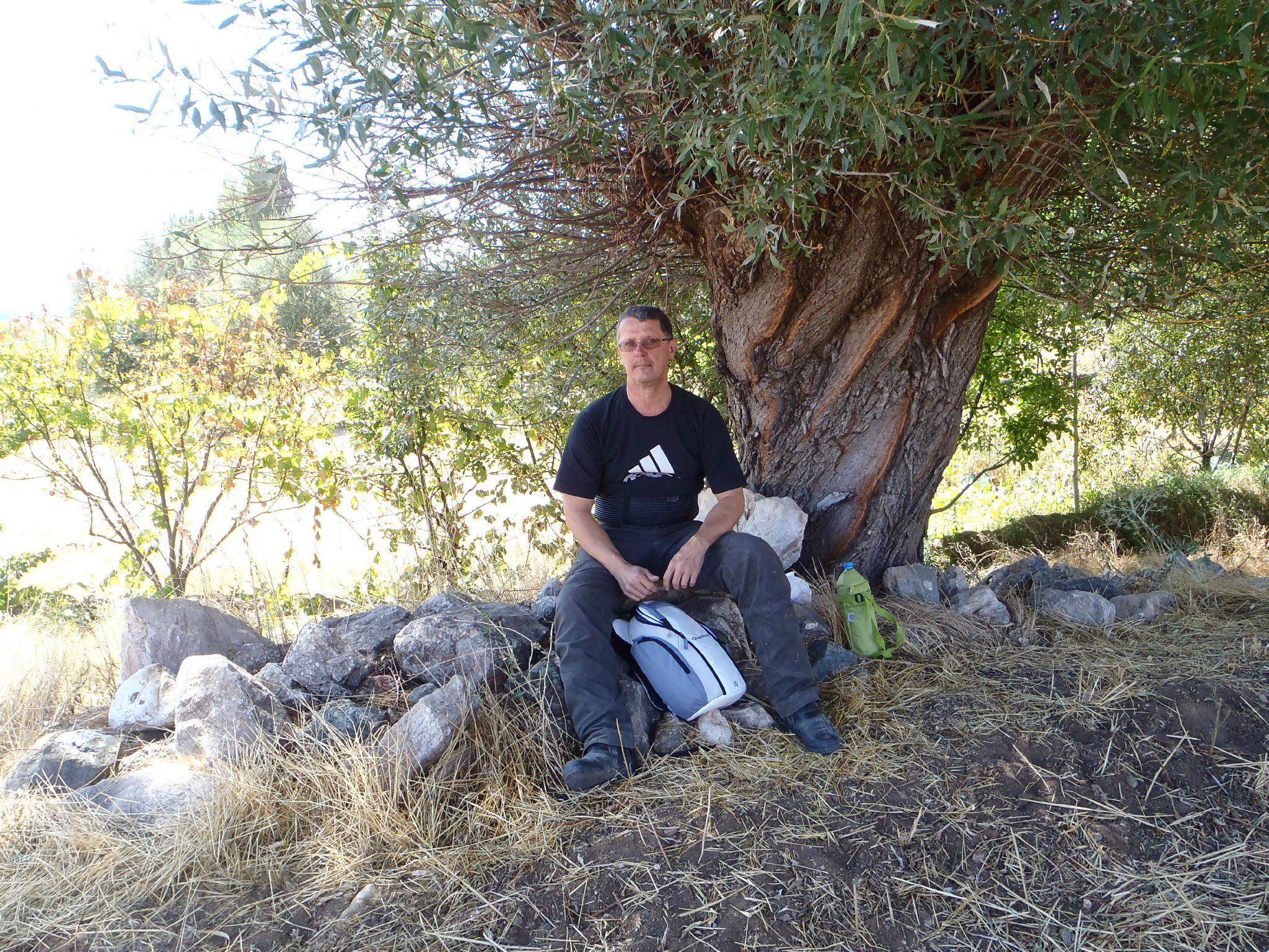 turquie pause picnic à l'ombre d'un saule