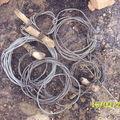 pieges (cables)