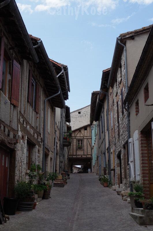 && Castelnau de Montmiral (36)
