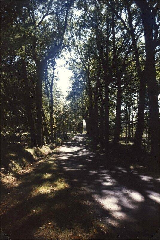route de Borie-Petit venant des Jaures