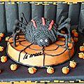 Gâteau araignée/spider cake