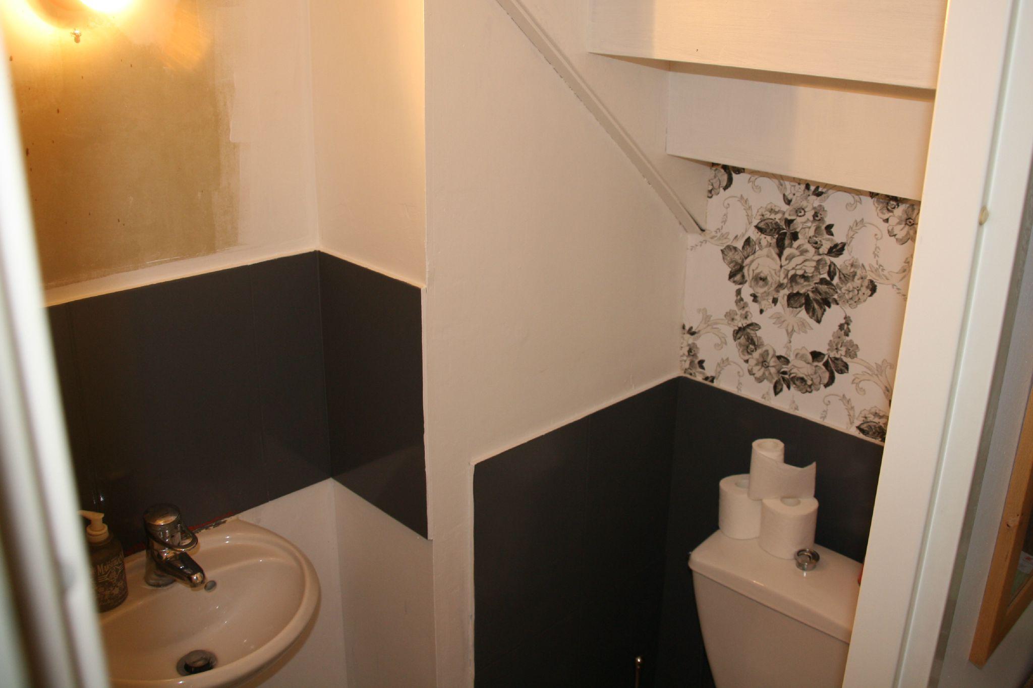 diy 1 d corer les murs de ses toilettes suite et fin. Black Bedroom Furniture Sets. Home Design Ideas