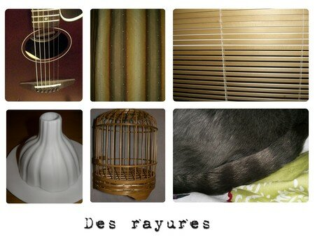 rayrures1